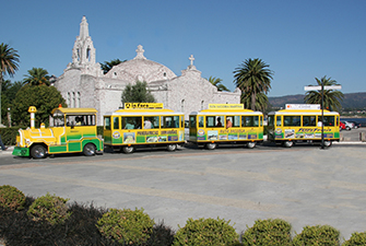 Trolley Train